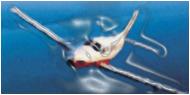 Pilote Professionnel et IR
